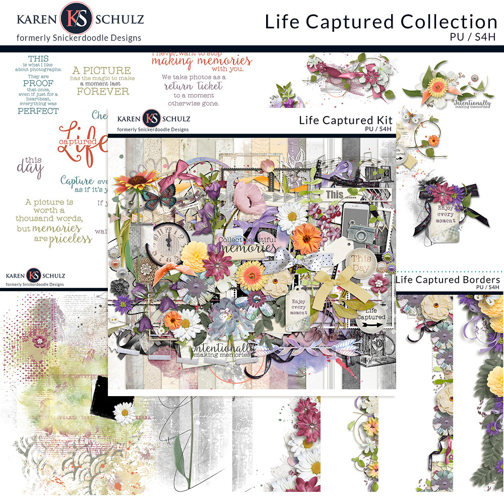Life Captured Collection