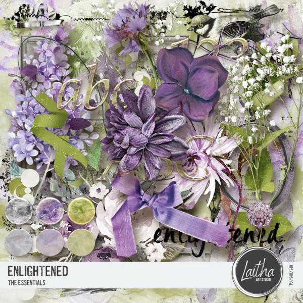 Enlightened - The Essentials