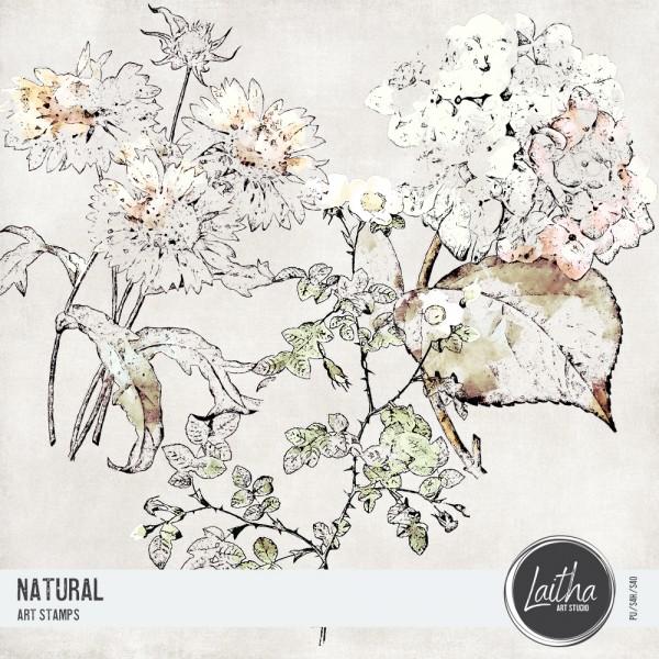 Natural - Art Stamps