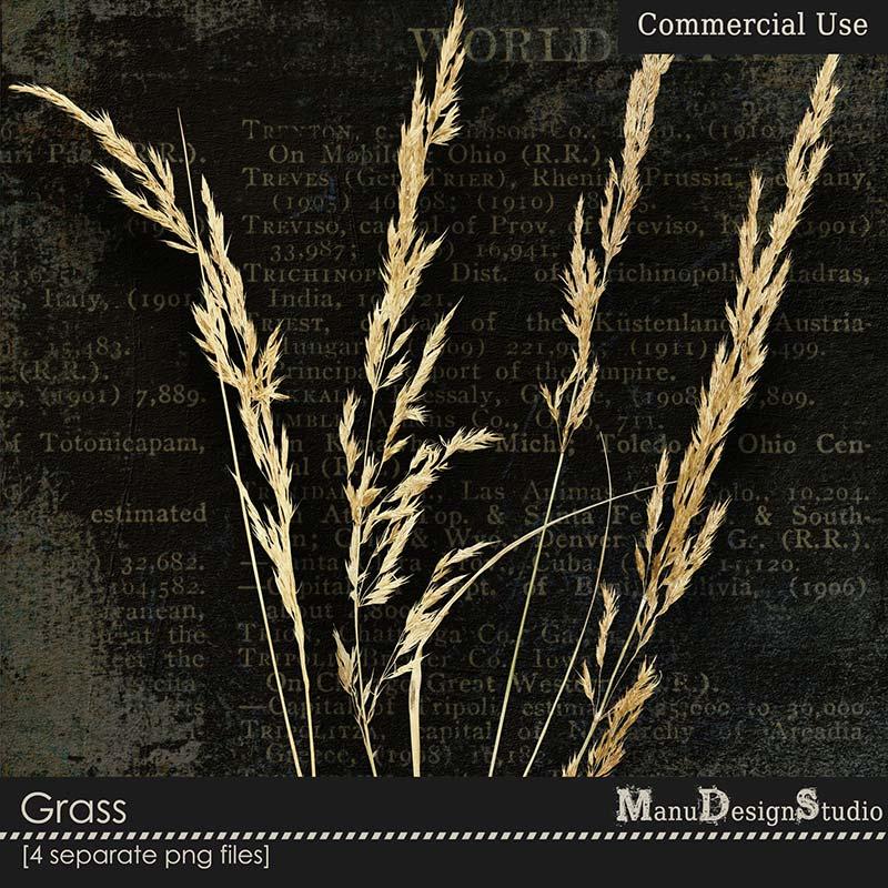 Grass - CU