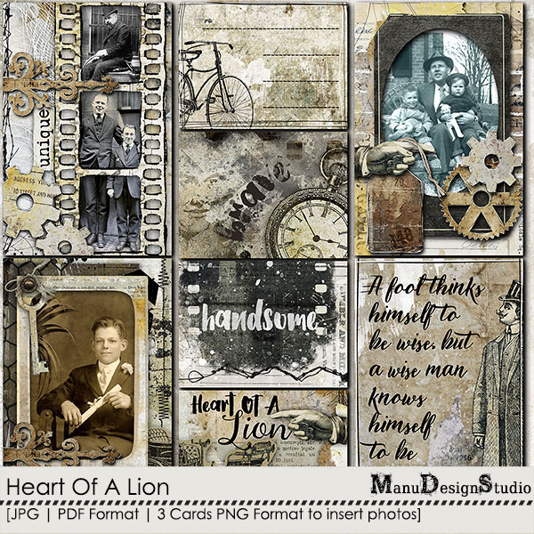 Heart Of A Lion - Pocket Cards