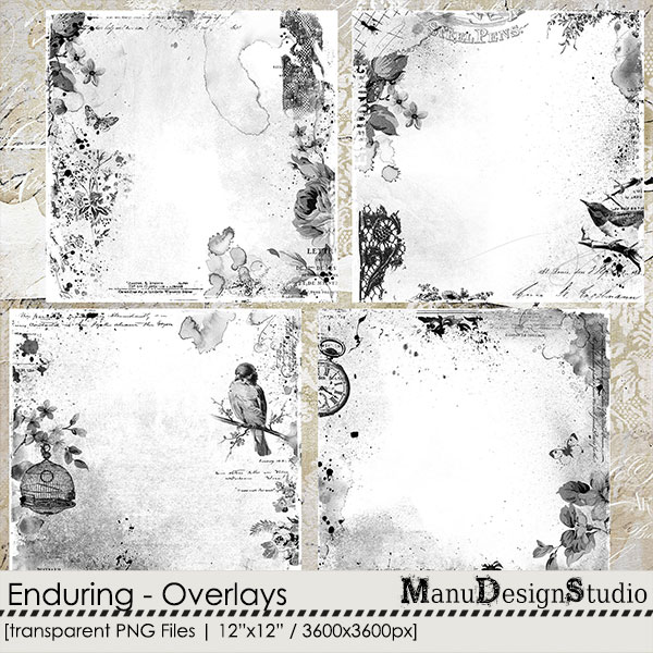 Enduring - Overlays