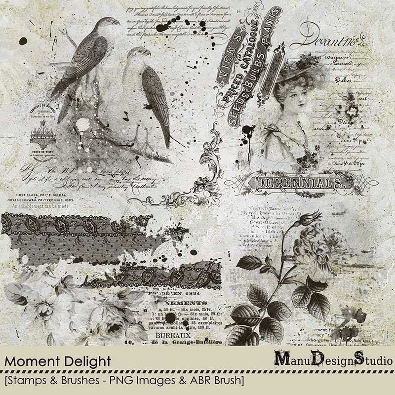 Moment Delight - Stamps and Brushes