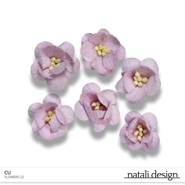 CU Flowers 22
