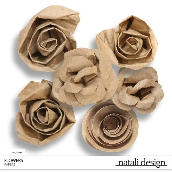 CU Paper Flowers