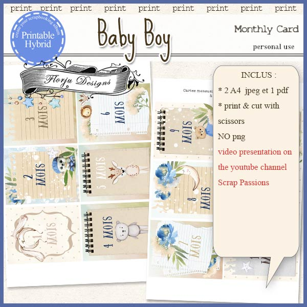 Baby Boy Printable Monthly Card by Florju Designs PU
