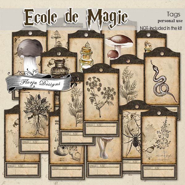 Ecole de magie Tags PU by Florju Designs