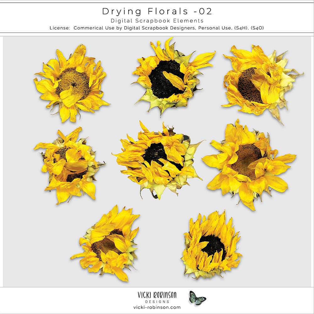 Drying Florals 02