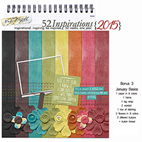 52 Inspirations 2015 - Bonus 3 - January Basics