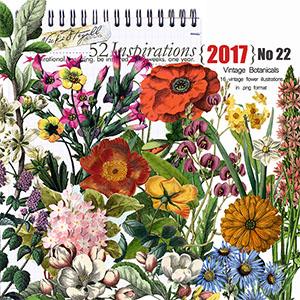 52 Inspirations 2017 - no 22 Botanicals by Vicki Stegall