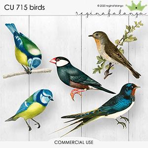 CU 715 BIRDS