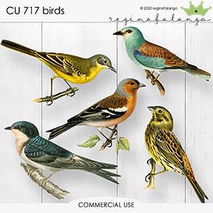 CU 717 BIRDS