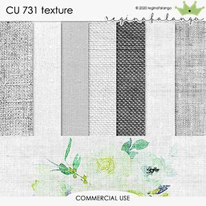 CU 731 TEXTURE