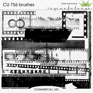 CU 756 BRUSHES