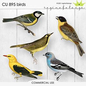 CU 895 BIRDS