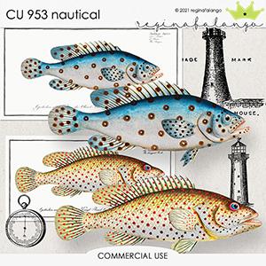 CU 953 NAUTICAL