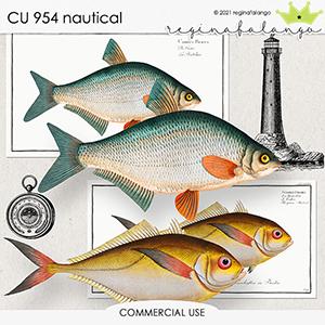 CU 954 NAUTICAL