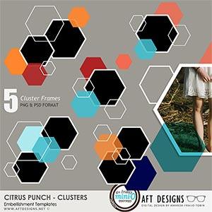 Citrus Punch Cluster Frame Embellishment Templates