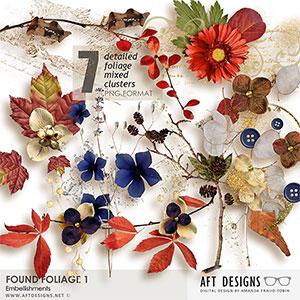 Found Foliage 1 Embellishments