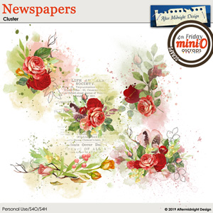 Newspaper Clusters
