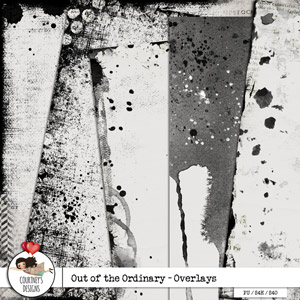 Out of the Ordinary - Artsy Overlays
