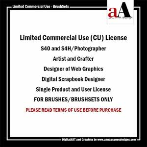 Limited Commercial Use License - BrushSets