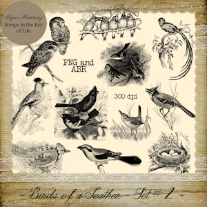 Birds of a Feather - Set 2 by Idgie's Heartsong