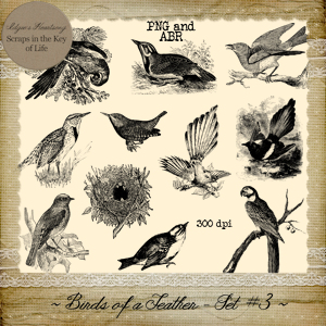 Birds of a Feather - Set 3 by Idgie's Heartsong