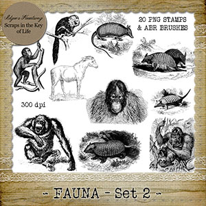 FAUNA - Set 2 - 20 Vintage PNG Stamps and Brushes by Idgie's Heartsong