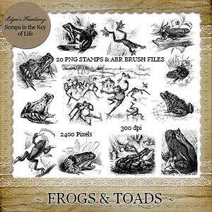 FROGS and TOADS - 20 Vintage PNG Stamps and Brushes