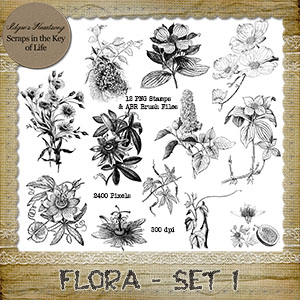 FLORA - Set 1 - 12 PNG Stamps and ABR Brush Files
