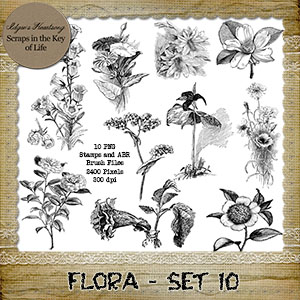 FLORA - Set 10 - 10 PNG Stamps and ABR Brush Files by Idgie's Heartsong