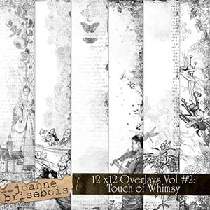 12x12 Overlays Volume 2: Touch of Whimsy Elements