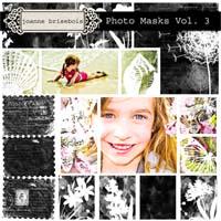 Photo Masks Vol. 3 Element Pack
