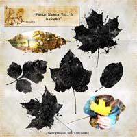 Photo Masks Vol. 5 Autumn Element Pack