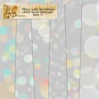 Still Life Collection: 12x12 Color Overlays Pack 1