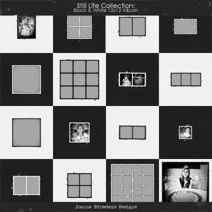 Still Life Collection: Black & White 12x12 Album