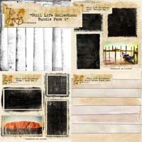 Still Life Collection: Bundle Pack 1