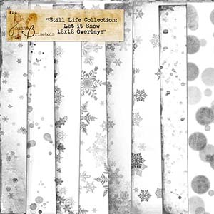Still Life Collection: Let it Snow 12x12 Overlays Element Pack