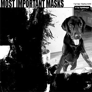 Most Important Masks