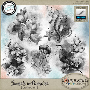Sunsets in Paradise { Brushed Art } by Jumpstart Designs