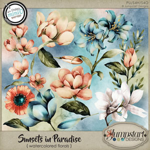 Sunsets in Paradise { Watercolored Florals } by Jumpstart Designs