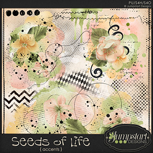 Seeds of Life { Accents } by Jumpstart Designs