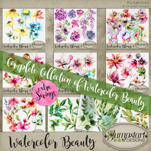Watercolor Beauty Collection 1
