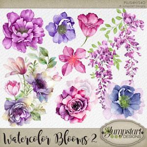 Watercolor Blooms 2