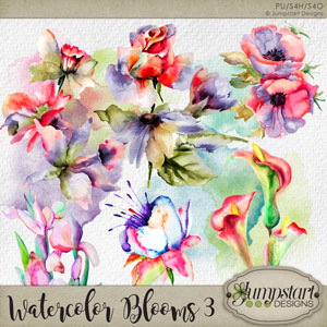 Watercolor Blooms 3