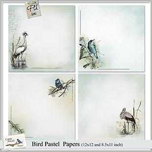 Bird Pastel Papers
