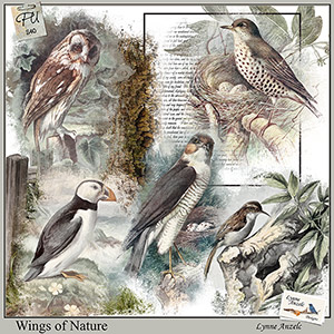 Wings of Nature