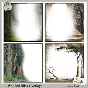 Wooded Bliss Overlays