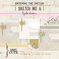 Entering the Sketch 6